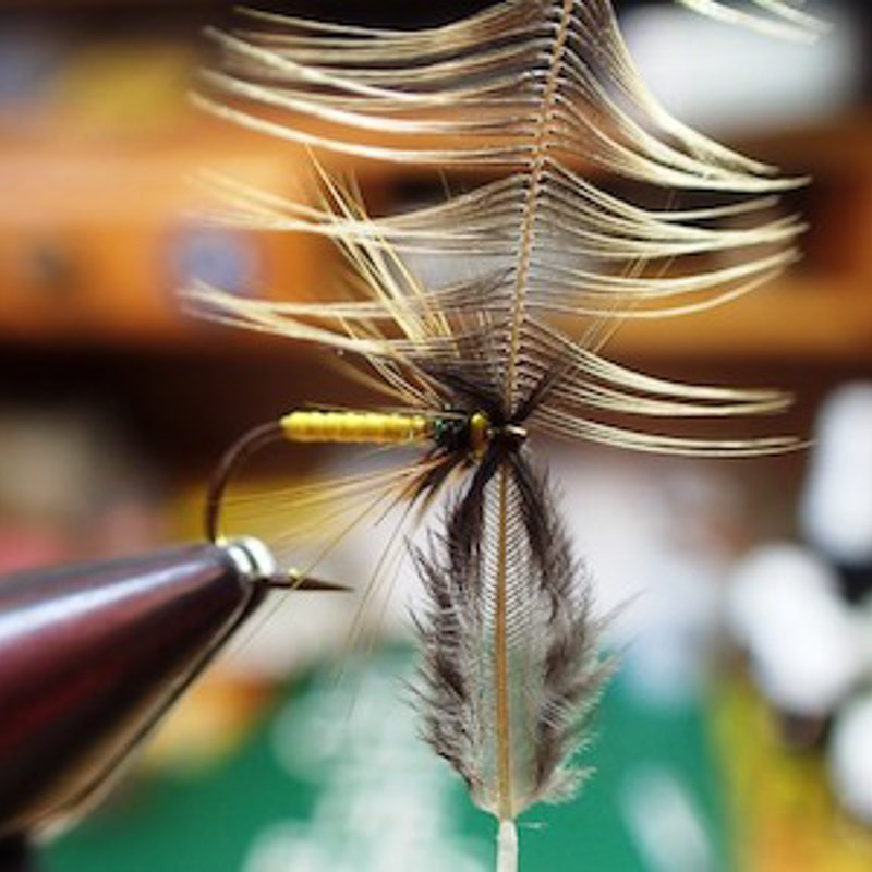 11. Step 11. Varnish head tying tip remove excess varnish from hook eye with waste hackle by drawing stem through eye