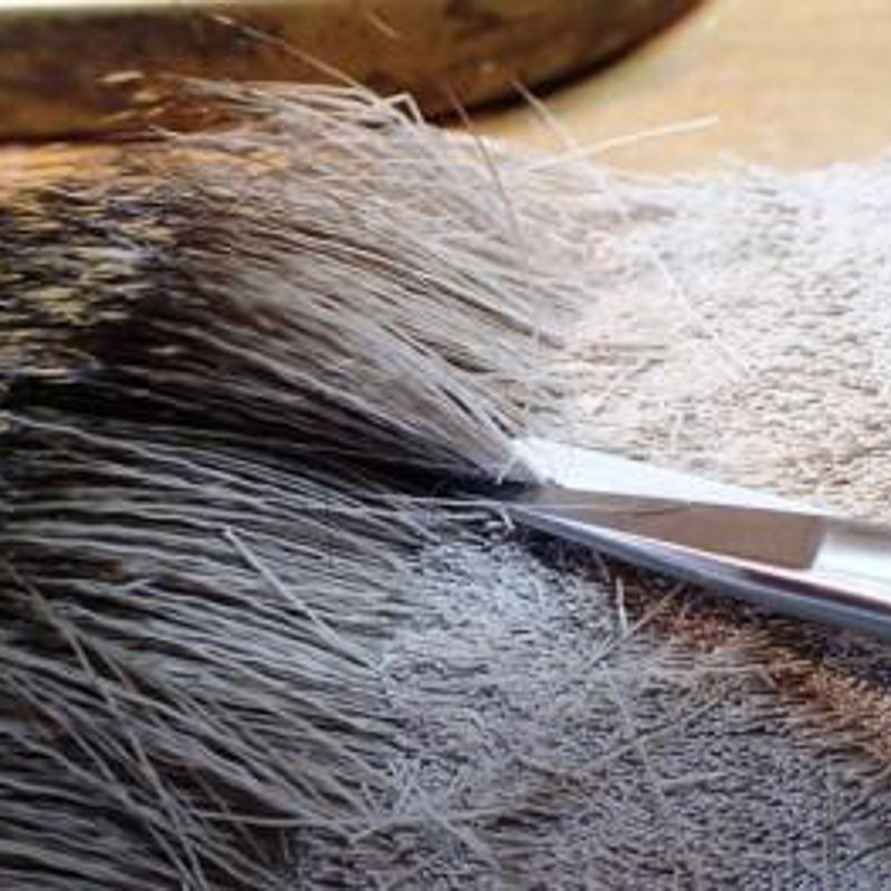 Step one fly tie sea trout