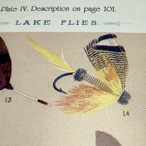 lake flies page 101